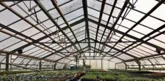 Les jardins potagers, une nécessité en temps de confinement
