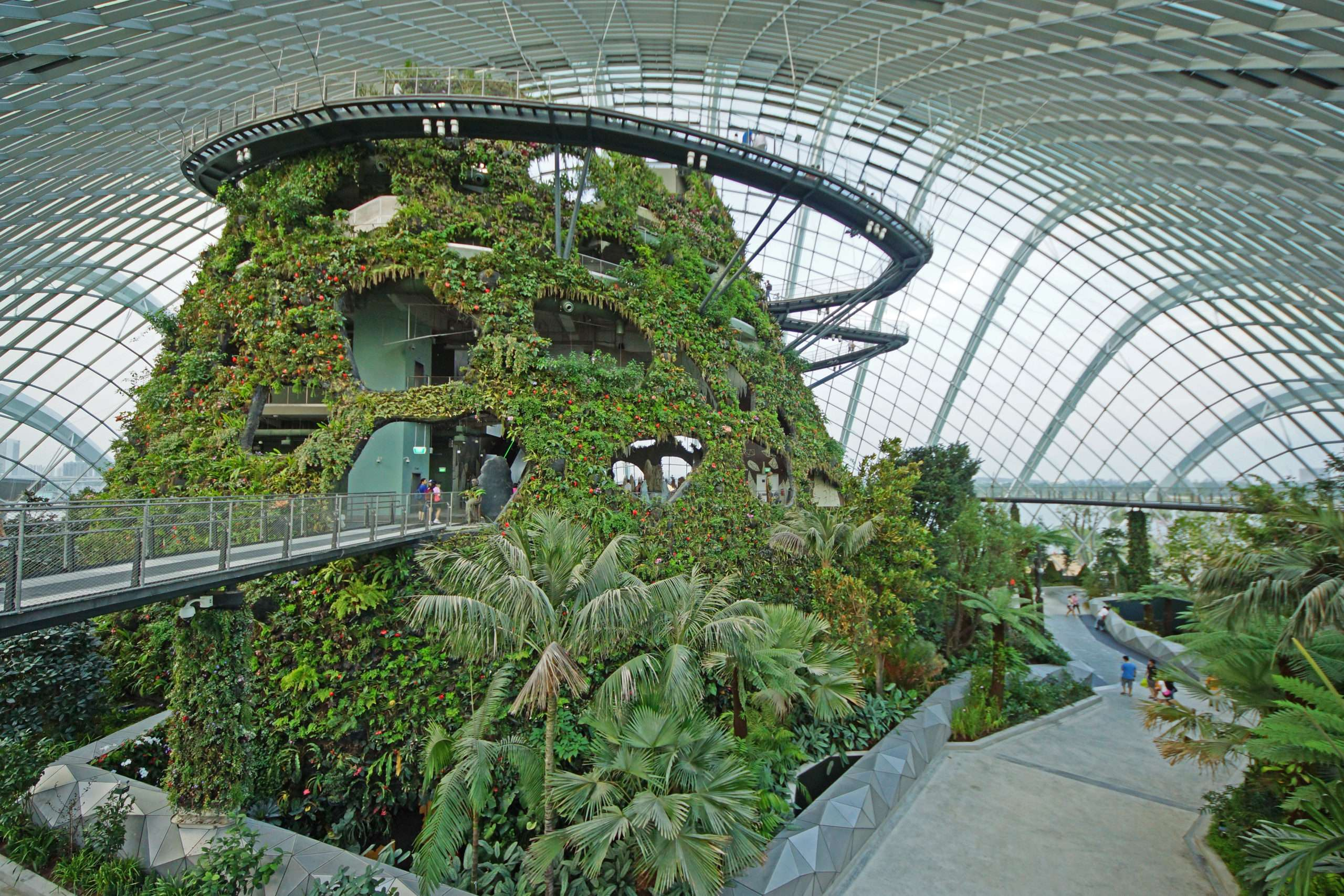 """La serre """"Cloud Forest"""" à Singapour, l'une des inspirations du projet Tropicalia. Photographie : Allie Caulfield via Wikimedia Commons"""