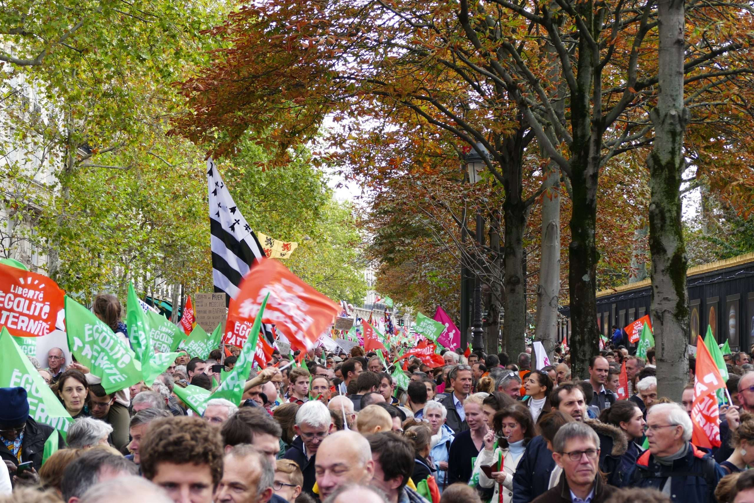 """Des Manifestant.es contre la PMA ont défilé à Paris, le 6 octobre 2019 et le 20 janvier 2020 à l'appel du mouvement conservateur """"Marchons Enfants"""". Photographie : Peter Potrowl sous licence créative commons"""