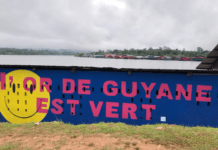 Mobilisation contre l'orpaillage en Guyane