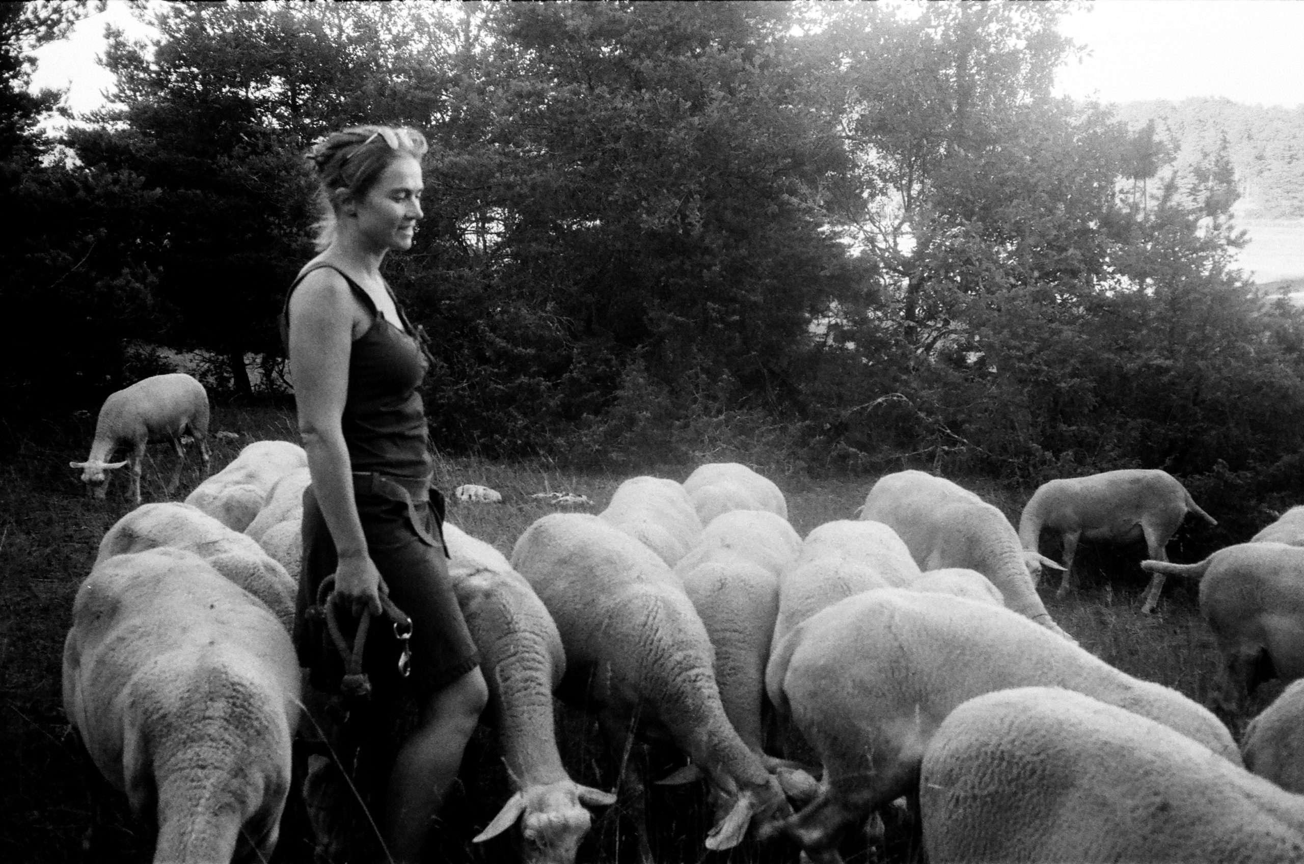 """Plateau du Larzac, août 2020, documentaire """"Larzac, des femmes face à l'armée""""."""